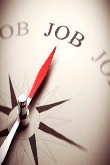 Addetto alle politiche attive per il lavoro Senior